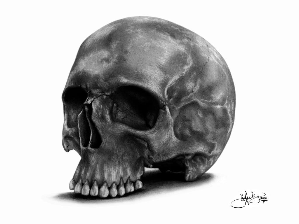 the skull of illugi swordbreaker