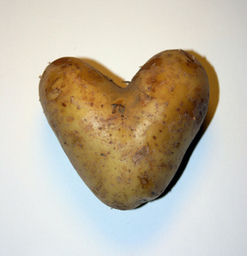 Sunshine's Training Potato