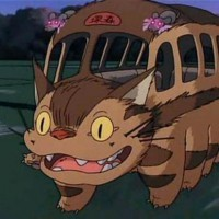 Catbus's Avatar