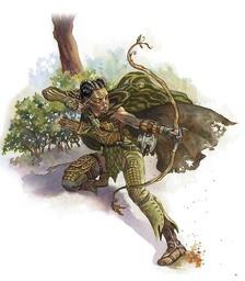 Chevalier Erin-Tae, chevalier d'Ogar