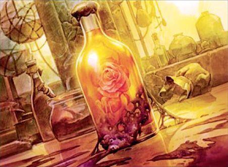 Sun Orchid Elixir