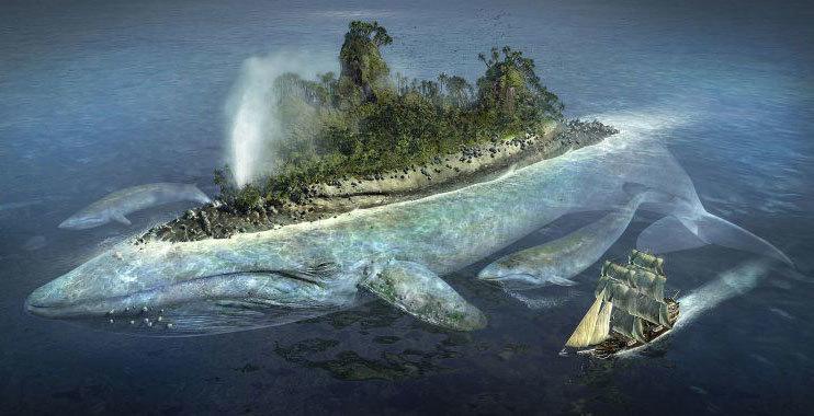 Majeen the Whale Merchant