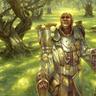 Master Woodshaper Kristoff