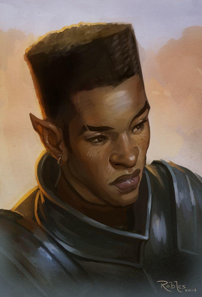 Commander Kiba
