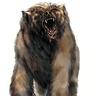 Dire Bear Pelt