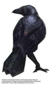 Blackvein