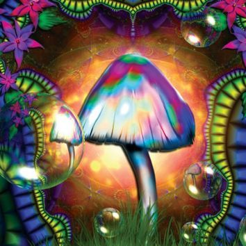 Moxie Mushroom