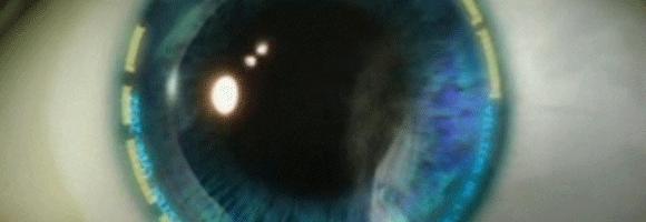 Zeiss Ikon Cybereyes