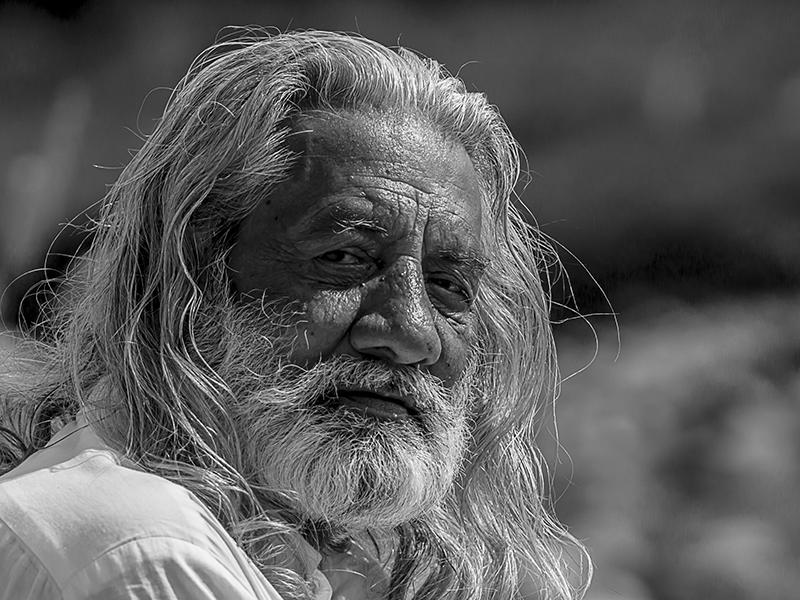 Elder Bu