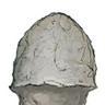 Mushroom thing