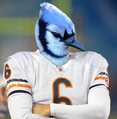 """""""Bull"""" Bluejay"""