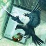 Sigma Raven