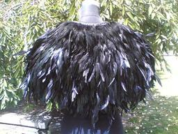The Raven Cloak of the Fey Lord
