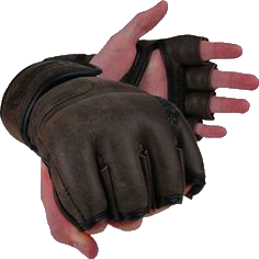 Gloves of Battery