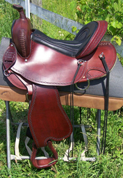 Steady Saddle