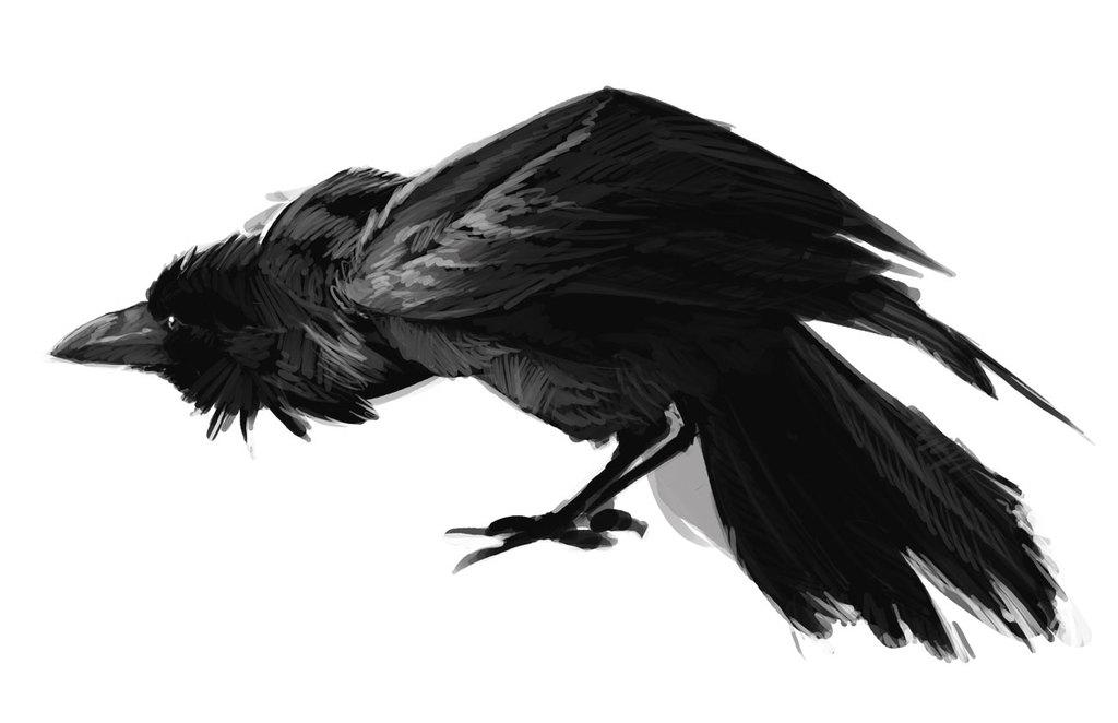 Crow 2, aka Wilster