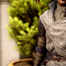 Silken Armor - Artifact ••••