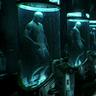 Clone Tanks