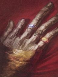 Rings of the Akarot