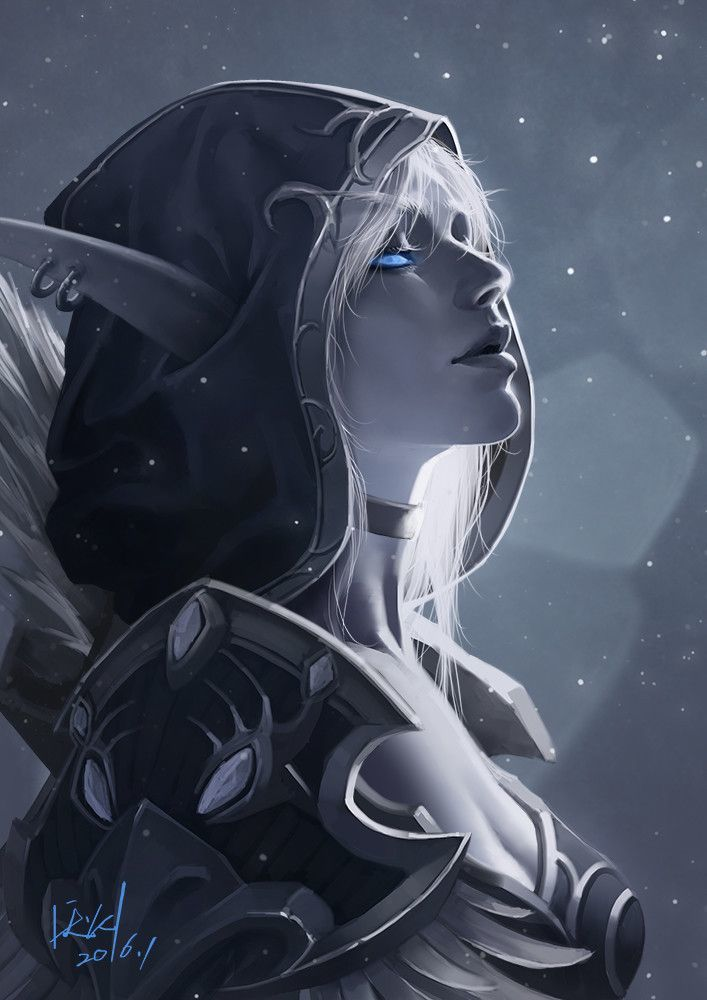 Lady Storm Silverhand