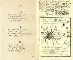 Ariandne's Spider Pamphlet