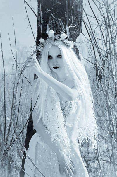 Princess of Twilight