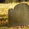 [*] Jorrik VII Grimson  pochowany w Baronii Beregard