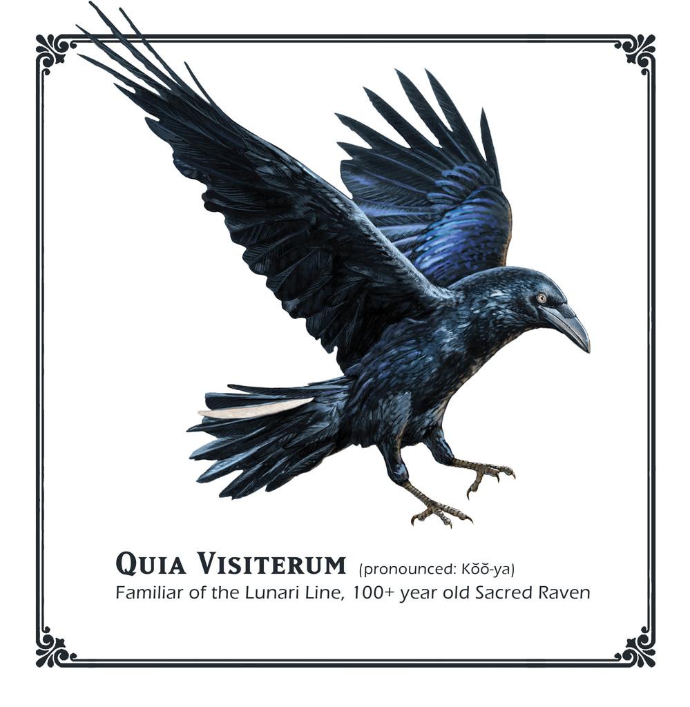 D&D Quia Visiterum