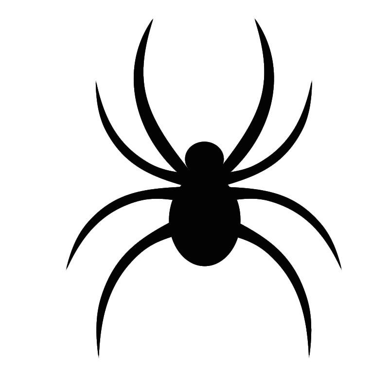 The Black Spider