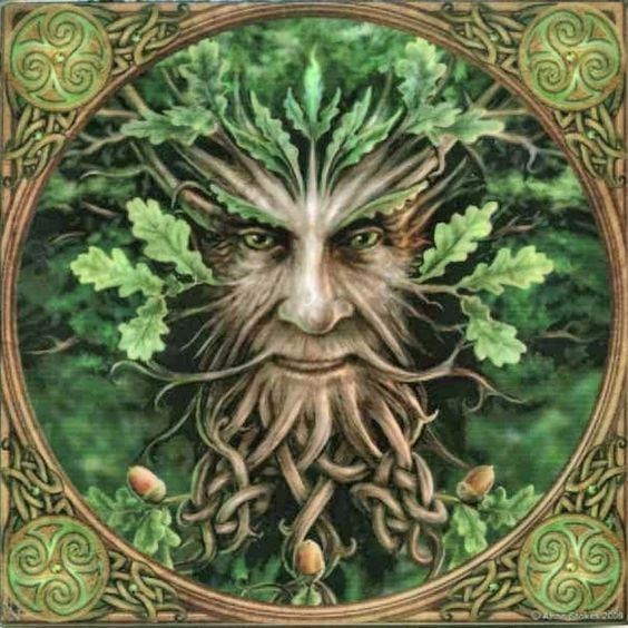 Father Oak