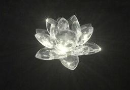 Kryształowa Róża Alicji Hawkwood