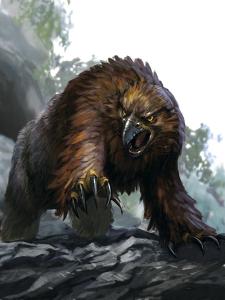 Obi, owlbear adolescent