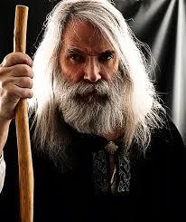 Wizard Ledouce