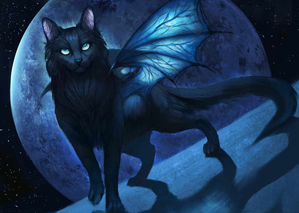 Salem Dragonfly