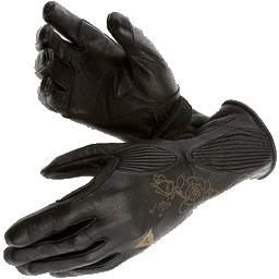 Gloves of Thievery