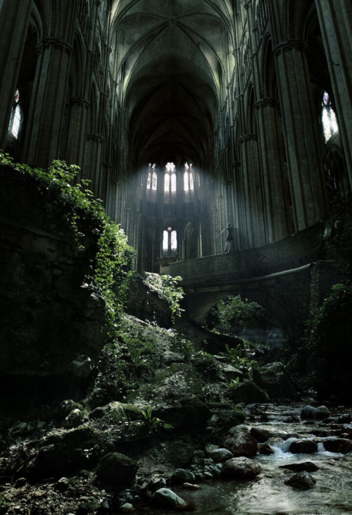 Crumbling Forest Cathedral