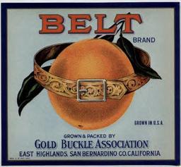 El Cinturon de Naranjas