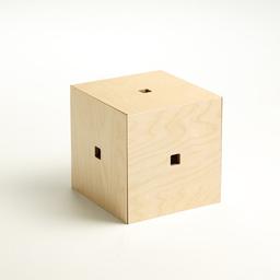 Memory Cube