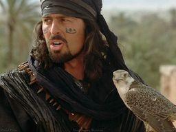 Faesal Al-Sayidi