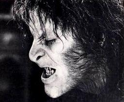 Veldraine the Blackwolf