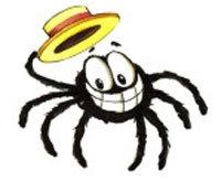 Mr. Doofy the Spider