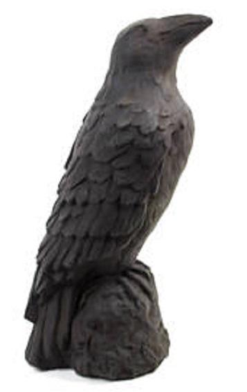 Ebony Raven