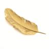 Piume d'Oro