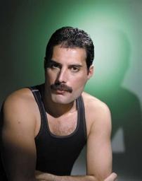 Marcus Fratelli