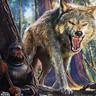 Momma Wolf