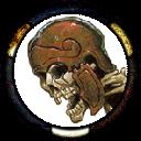 Skeleton (Human)