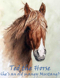 Ted the Horse