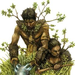 Feral Elves