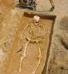 Undead-Skeletons