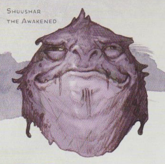 Shuushar the Awakened